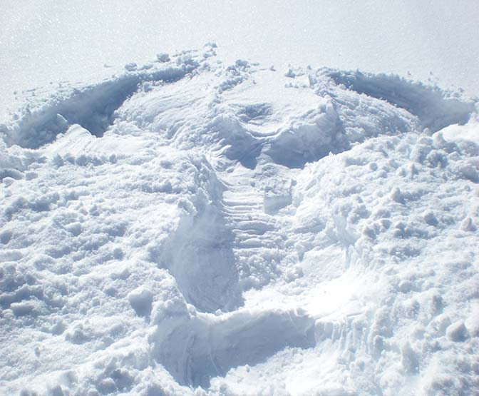 snow angel in the snow